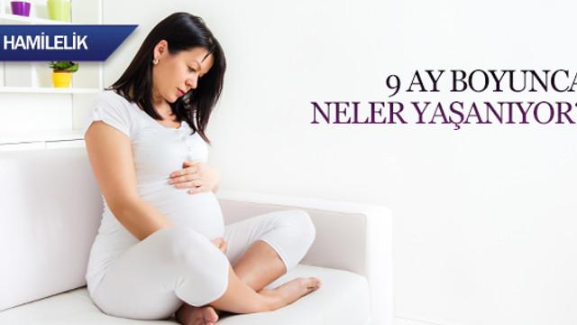 Рассказы беременных о беременности 189