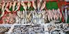 Türkiye'de yakalanan balıklarda civa tespit edildi
