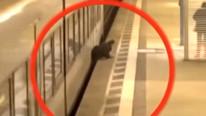Metro istasyonunda ölüm kalım anları kamerada !