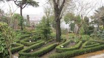 İstanbul'un son yeşil alanlarından biri için çarpıcı iddia