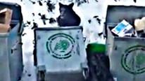 Bursa'da aç kalan kalan ayı çöpü karıştırdı