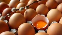 Bakanlık'tan zehirli yumurta açıklaması