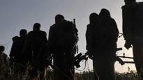 PKK'nın ABD'li dostundan skandal Türkiye açıklaması