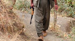 PKK'da çöküş itirafı ! Örgüt içi işkence ve infazlar başladı