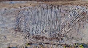 Tarla gibi sürülen kumsalda 50 yuva yok oldu