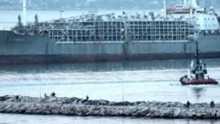 9 bin hayvan limana gelince...