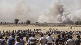 Valilik'ten Kobani açıklaması !