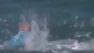 Canlı yayında köpekbalığı saldırısı dehşeti