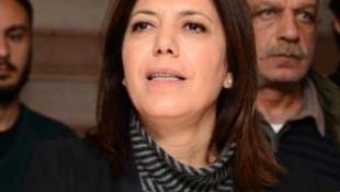 HDP'den 'Çınar' açıklaması: Özür bekliyoruz