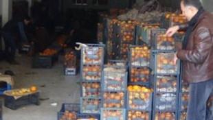 Rusya'nın almadığı 100 ton portakalı memleketinde satıyor