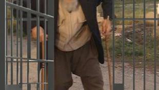 95 yaşında cezaevine girdi !