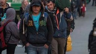 Sığınmacılar din değiştirmeye başladı !