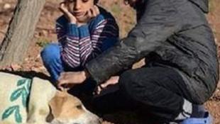 Battaniyesini yaralı köpekle paylaştı