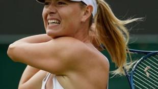 Sharapova'nın koala merakı