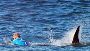 Dünya şampiyonuna köpek balığı saldırdı