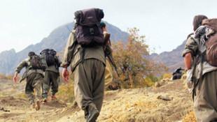 PKK'lı terörist, iş makinesi operatörüne teslim oldu