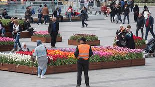Taksim'de lale nöbeti