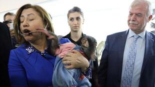 Fatma Şahin'in şempanzeyle zor anları