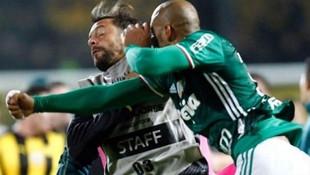 Felipe Melo rakibini böyle yumrukladı !