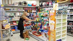 ''Petshop''larda kedi ve köpek satışı bitiyor