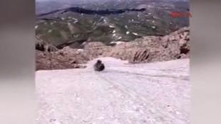 Mehmetçik Kato Dağı'nda kayak yaptı