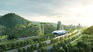 İlk orman kentini inşaya hazırlanıyor