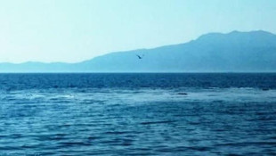 Çanakkale'deki görüntü ile ilgili üç korkutan iddia