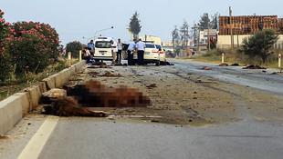 Korkunç kaza; asfalt kana bulandı