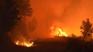 İzmir'de ormanlık alan saatlerdir yanıyor !