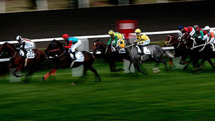 At yarışında yanlış at piste çıktı