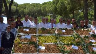 Sezonun ilk kuru inciri 200 TL'den satıldı
