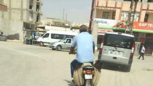 İki çocuğu motosikletin heybesinde götürdü