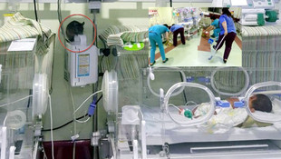 Hastanenin yeni doğan servisine fare girdi !