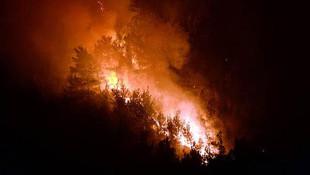 Karabük'te orman yangını ! Kontrol altına alınamadı...
