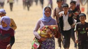 Türkiye'deki Suriyeli sayısı 3.5 milyona ulaştı