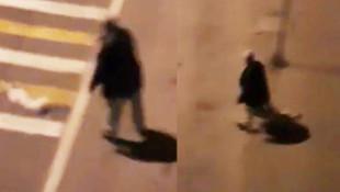 Baygın köpeği sokak ortasında işkence !