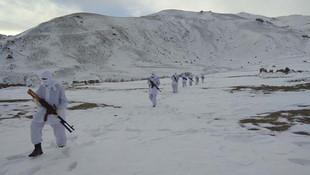 Jandarma timleri PKK'ya göz açtırmıyor