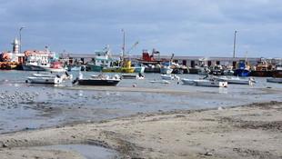 Tekirdağ'da deniz çekildi, kum adacıkları oluştu