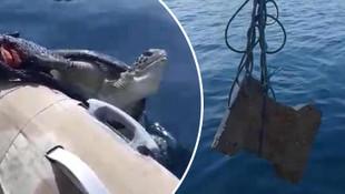 Marmaris'te insanlık dışı olay ! Denizciler kurtardı