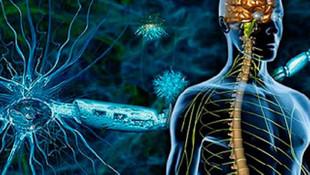 Emes (MS ya da Multipl Skleroz) Belirtileri