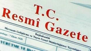 Köprü cezalarını iptal eden kanun Resmi Gazete'de