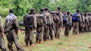 HDP'li vekilin PKK kampında eğitim aldığı ortaya çıktı