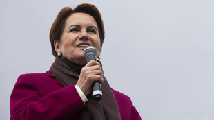Akşener'e sürpriz danışman !