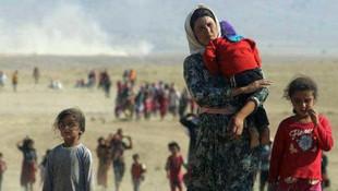 Ezidiler isyan etti: ''PKK'lılar zorla kaçırıyor''