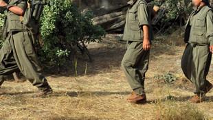 Kuzey Irak'ta PKK'nın inlerine giriliyor ! 38 terörist öldürüldü