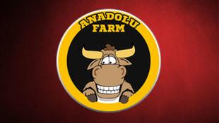 Anadolu Farm'a operasyon: 3 yöneticisi gözaltına alındı