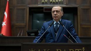 Mini uyum paketinde özel Erdoğan maddesi