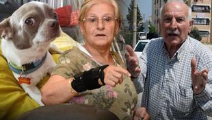 Kasklı hırsız girdiği evde köpeği gasp etti