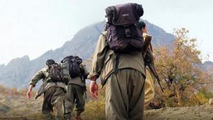 İçişleri Bakanlığı: ''3'ü üst düzey 42 terörist etkisiz hale getirildi''
