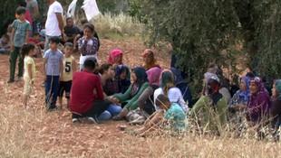 Gaziantep'te damat cinneti: 3 ölü, 1 yaralı